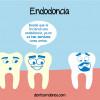 ¿Por qué fracasan las endodoncias?