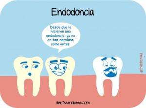 dientes-molones-endodoncia151